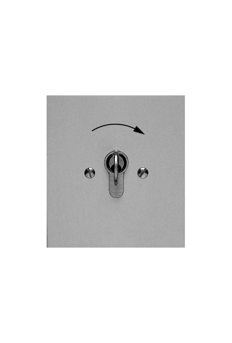 Somfy Poussoir à clé exterieur encastré (so 1850056)