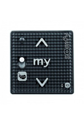 Somfy Module SMOOVE RS100 1 io noir (so 1811316)